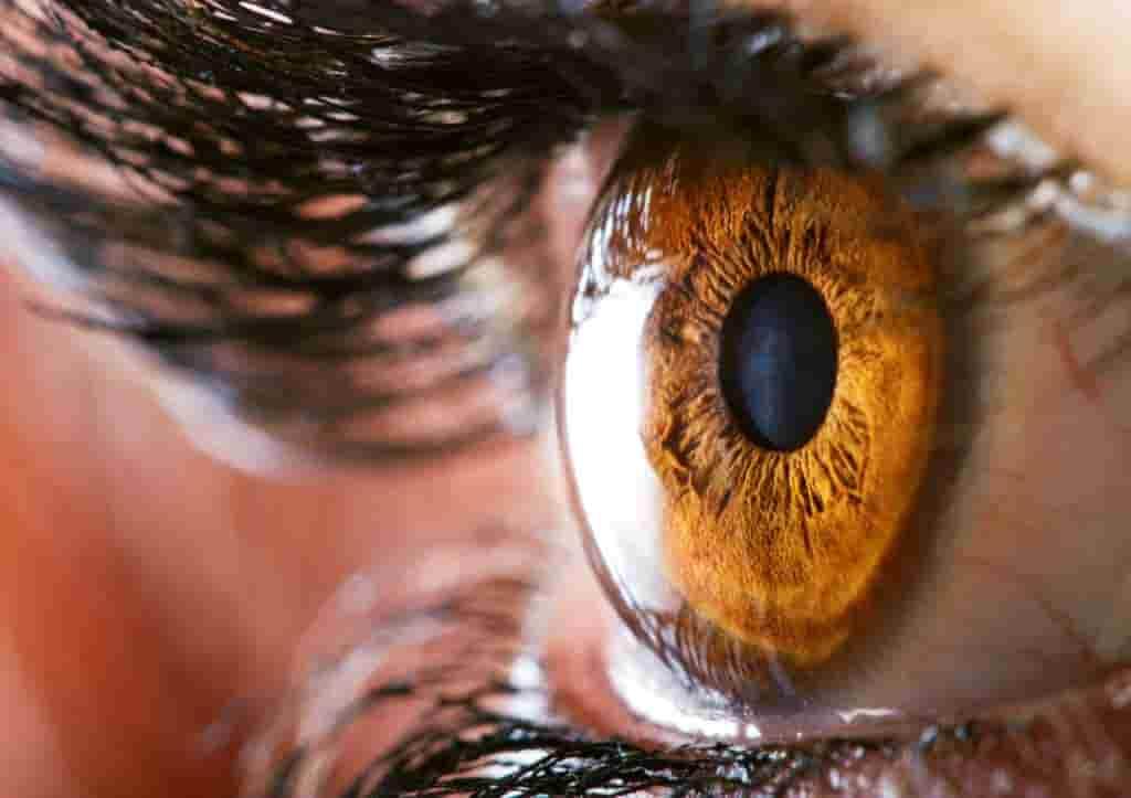 Laser Tag Tips - eyes